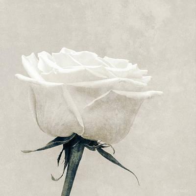 Flower Design Photograph - Elegance In White by Wim Lanclus