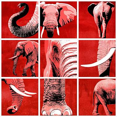 Elephant Painting - Elephant Animal Decorative Red Multiptych 1 - By  Diana Van by Diana Van