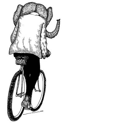 Wheel Drawing - Elephant Bike Rider by Karl Addison