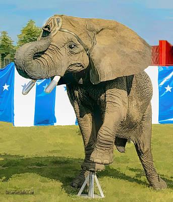 Elephant Photograph - Elephant Dance by LeeAnn McLaneGoetz McLaneGoetzStudioLLCcom