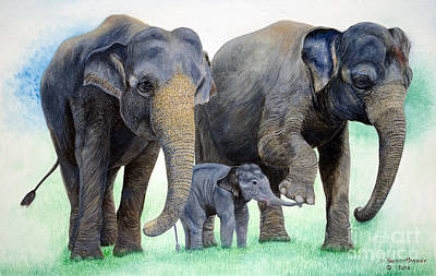 Painting - Elephant Family. by Fine art Photographs
