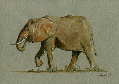 Elephant Watercolor Print by Juan  Bosco