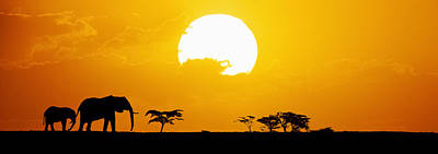 Large Mammals Photograph - Elephants Silhouetted At Sunset by Tim Booth