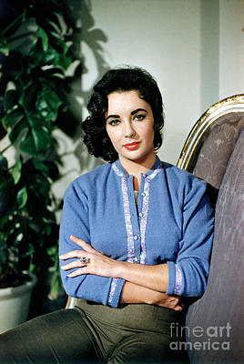 Photograph - Elizabeth Taylor 1950s by Sanford Roth
