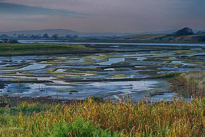 Grassland Photograph - Elkhorn Slough by Bill Roberts