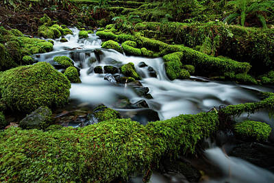 Emerald Flow Print by Edgars Erglis