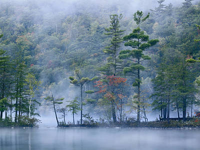 New England Photograph - Emerald Lake In Fog Emerald Lake State by Tim Fitzharris