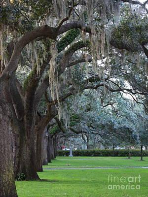 Emmet Park In Savannah Print by Carol Groenen