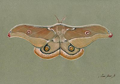 Gums Painting - Emperor Gum Moth by Juan Bosco