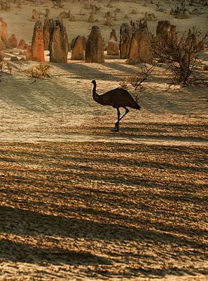Emu Digital Art - Emu Terrain by Heather Thorning