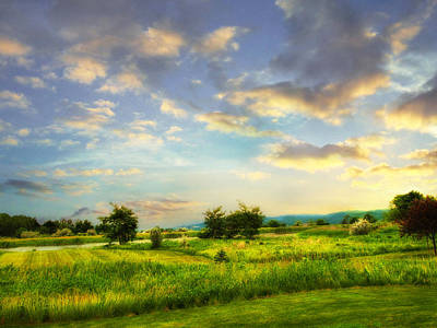 Finger Lakes Photograph - Enchanted Valley by Jessica Jenney
