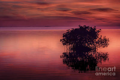End Of Another Day Print by Marvin Spates