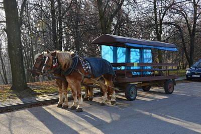 Equestrian Team Print by Henryk Gorecki