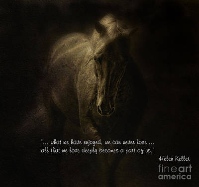 Equine Photograph - Equine Sympathy Card Emerge by Sue Fulton
