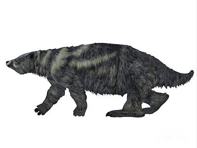 Sloth Digital Art - Eremotherium Sloth Side Profile by Corey Ford