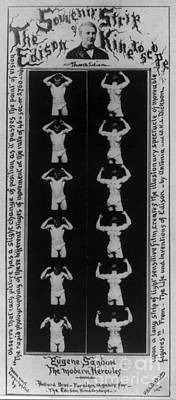 Dickson Photograph - Eugen Sandow, Edison Kinetoscope Strip by Science Source