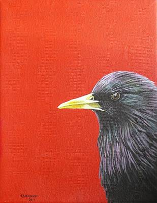 European Starling Original by Theodora Sacknoff