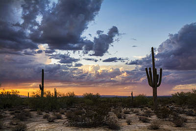 Rainy Day Photograph - Evening Desert Rain  by Saija Lehtonen