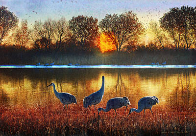 Del Rio Digital Art - Evening On The Bosque by R christopher Vest