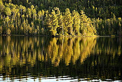 Evening Reflections On Alder Lake Print by Larry Ricker