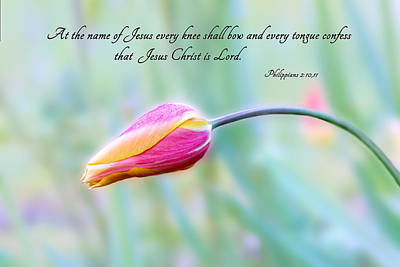 Every Knee Shall Bow Print by Mary Jo Allen