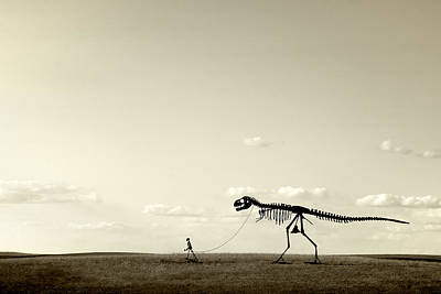 Human Skeleton Photograph - Evolution by Todd Klassy