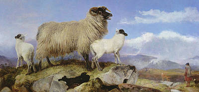 Scottish Dog Painting - Ewe And Lambs by Richard Ansdell