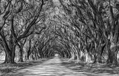 Oak Photograph - Exploring Louisiana - Paint Bw by Steve Harrington