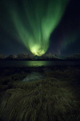 Eye In The Night Print by Tor-Ivar Naess