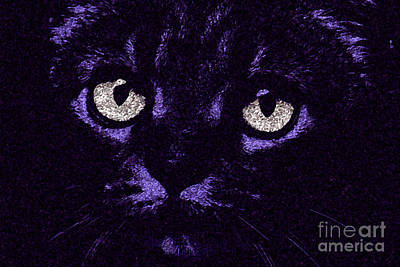 Kitty Digital Art - Eyes Straight To The Heart by Andee Design