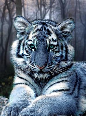 Tiger Digital Art - Fabled by Julie L Hoddinott