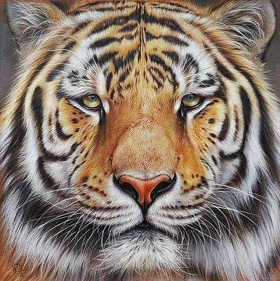 Faces Of The Wild - Amur Tiger Print by Elena Kolotusha