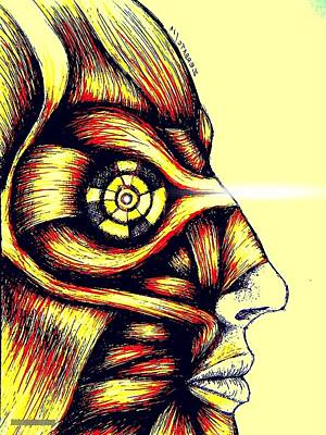Facial Muscles Print by Paulo Zerbato