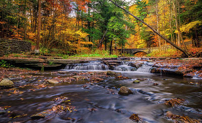 Motion Photograph - Fall At Wolf Creek by Mark Papke