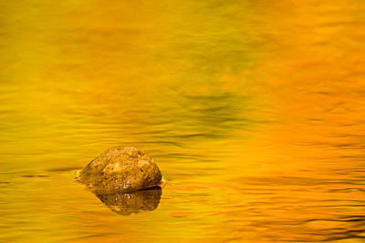 Flowing Photograph - Fall Color Abstract by Adam Romanowicz