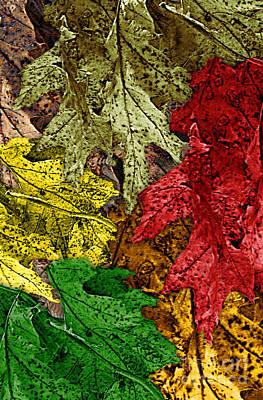 Fall Down Print by Tom Romeo