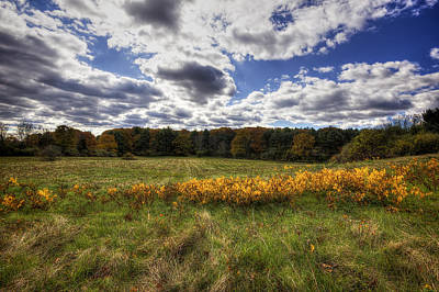 Field. Cloud Photograph - Fall Foliage by Eric Gendron