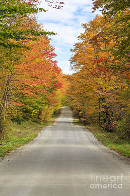 Fall Foliage On The Back Roads Of Vermont Print by Edward Fielding
