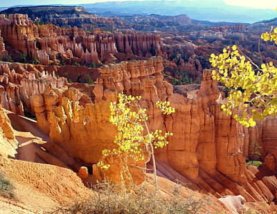 Fall In Bryce Canyon Print by Marty Koch