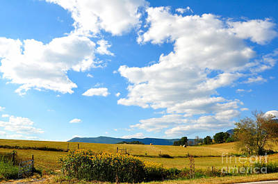 Kerr County Photograph - Fall Is On The Way by Todd Hostetter