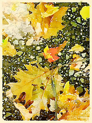 Fall Leaves And Stones Print by Janet Dodrill