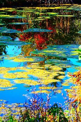 Webster Ny Photograph - Fall Pond by Jennifer Craft