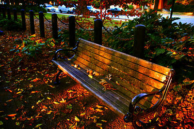 Park Benches Photograph - Fall Scene And The Bench In The Park by Susanne Van Hulst