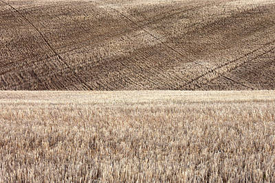 Agronomy Photograph - Fallow Field by Todd Klassy