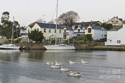 Family Outing At Mylor Bridge Print by Terri Waters