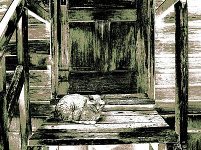 Friendly Digital Art - Farm Cat by Will Borden