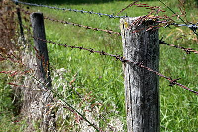 Farm Fence Original by Rodger Mansfield