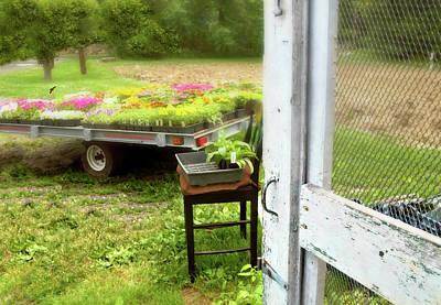 Screen Doors Photograph - Farm Yard Door by Diana Angstadt