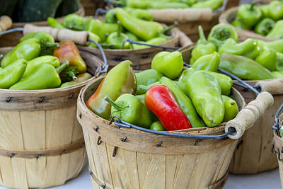 Farmers Market Hot Peppers Print by Teri Virbickis