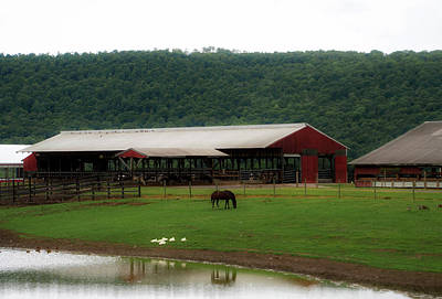 Farming Finger Lakes New York 05 Print by Thomas Woolworth